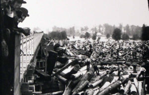 Log jam on the Grand River.